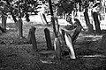 Algemene Begraafplaats Amersfoort.jpg