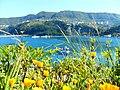 Amasra Manzarası... - panoramio.jpg