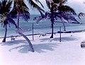 Ambergris Caye El Pescador 1975 Shore.jpg