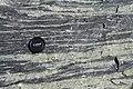 Amphibolite in Geopark on Albertov (3).JPG