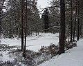 Amputa-joki on jäässä, avannosta haetaan vettä - SUK1279-11 (musketti.M012-SUK1279-11).jpg
