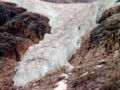 Angel Glacier Mount Edith Cavell.jpg
