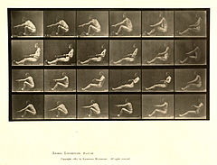 Animal locomotion. Plate 492 (Boston Public Library).jpg