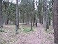 Antazavės sen., Lithuania - panoramio (52).jpg