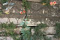 Apollonia ad Rhyndacum, Spolie in der byzantinischen Burgmauer.jpg