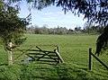 Approaching Highclere Estate - geograph.org.uk - 360255.jpg