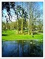April Freiburg Botanischer Garten - Master Botany Photography 2013 - panoramio (6).jpg