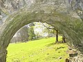 Archway over path leading from the old St. Gwenllwyfo Church to Llysdulas House - geograph.org.uk - 733745.jpg