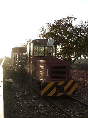 Society for the Preservation of Carter Railroad Resources - 5 ton SPCRR 1 or Katie hauling cars, 1 January 2007