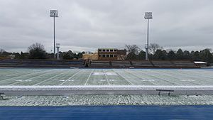 Armstrong Stadium - Image: Armstrong Stadium's Astroturf