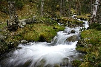 Arroyo - Sierra de Guadarrama.jpg