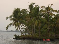Ashtamudi Lake 2006.jpg