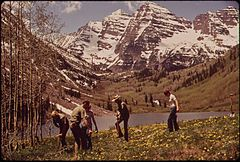 Aspen Residents Help U.S. Forest Service Personnel Plant Seedlings at Marron Lake Campground, 12 Miles North of Aspen, 05-1972 (3856283691).jpg