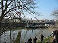 Aufstellung der Schlossbrücke Gröba am 29.03.2011 (3).JPG