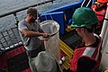 August 6, 2011 Preparing the plankton net (6016325928).jpg