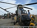 Australian Army Tiger helicopter at the 2007 Australian International Airshow.jpg