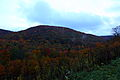 Autumun-colors-evening-mountains - West Virginia - ForestWander.jpg