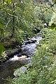 Bělá river below Deštné v Orlických horách.jpg