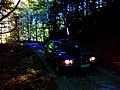 BMW E39 523i in a forest in Crroatia with narrow road.jpg