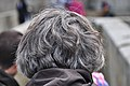 Back head, grey hairs.jpg