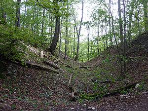 Burgstall - The Bertaburg on the spur of Landsöhr