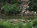 Bagmati Waste Disposal.jpg