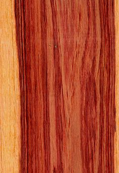 Tulipwood Wikipedia The Free Encyclopedia