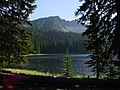 Baldy Lake and Forest, Wallowa-Whitman National Forest (26800784945).jpg