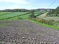Balleeghan Lower - geograph.org.uk - 1331044.jpg