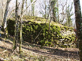 Tumulus at Roche-Chèvre