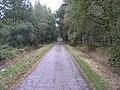 Barnbruch 11.10.2009 - panoramio (4).jpg