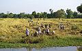 Battambang Provinz 01.jpg