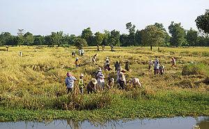 Battambang Provinz 01