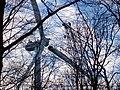 Bau eines Windrades - panoramio (5).jpg