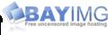 Bayimg logo.png