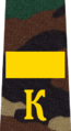 Belarus Military Academy—Internal Troops Department—02 Cadet-Senior Sergeant rank insignia (Camouflage).png