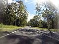 Benandarah NSW 2536, Australia - panoramio (37).jpg