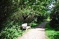 Bench, Haysden Country Park - geograph.org.uk - 2149580.jpg