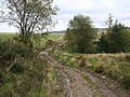 Bend in the byway - geograph.org.uk - 1013929.jpg