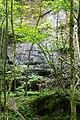 Berdorf (LU), Aesbachtal -- 2015 -- 4581.jpg