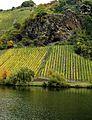 Beste Weinlagen an der Mosel. 02.jpg