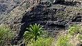 Biosphere Reserve La Gomera 27.jpg