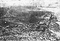 Bird's-eye view of Dawson, Yukon Territory, between 1894 and 1904 (AL+CA 561).jpg
