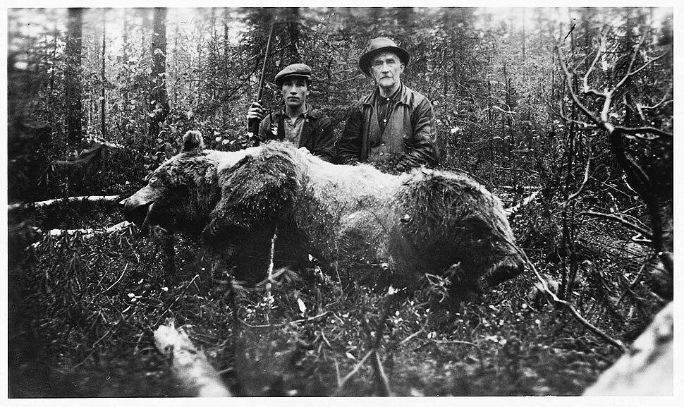 Björnjakt i Dalarna - Nordiska Museet - NMA.0052736