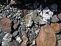 Black smoker rocks (sulfidic wad) (Helen Iron-Formation, Neoarchean, 2696-2749 Ma; Sir James Pit, Eleanor Iron Range, Ontario, Canada) 28 (48069872841).jpg