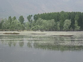 Boats in Wullar Lake.jpg