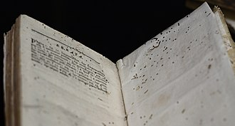 Bookworm (insect) - Pages riddled with bookworm damage on Errata.