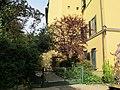 Borgo pinti 55, palazzina, giardino 16.JPG