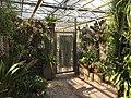Botanische tuinen Utrecht 52.jpg