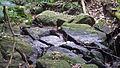 Boulders in a stream, Atlantic forest, northern littoral of Bahia, Brazil (15164280780).jpg